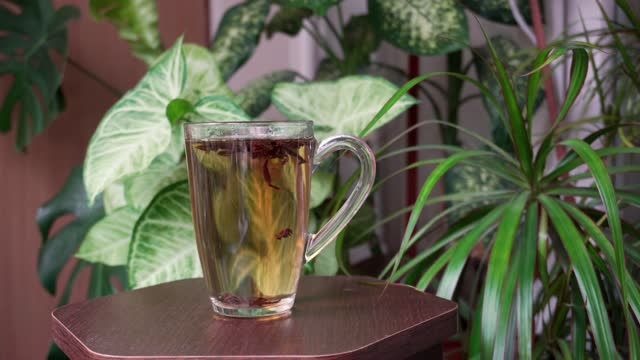 A glass of aromatic tea on a background of green plants. Tasty hot drink.