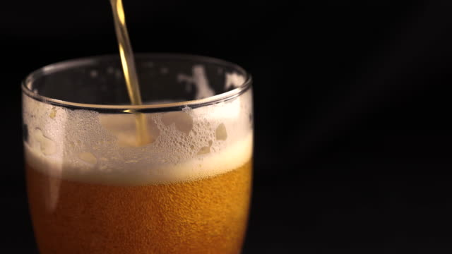 A glass of beer on a black background pour a intoxicating drink close-up lager stock videos & royalty-free footage