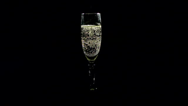 vídeos de stock e filmes b-roll de glass of champagne on black background,slow motion - champanhe