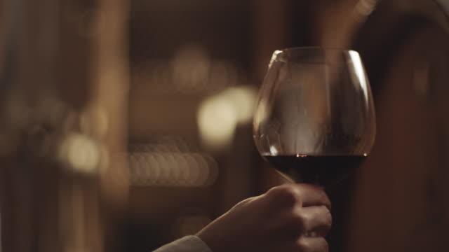 glas vitt vin i vinkällare - vit rieslingdruva bildbanksvideor och videomaterial från bakom kulisserna