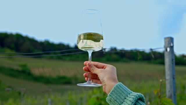 ブドウ畑の白ワインを一杯。女性はつるの庭に白ワインのグラスを持っています - ワイングラス点の映像素材/bロール