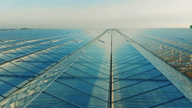 glasshouse roof on a sky background. - orticoltura video stock e b–roll