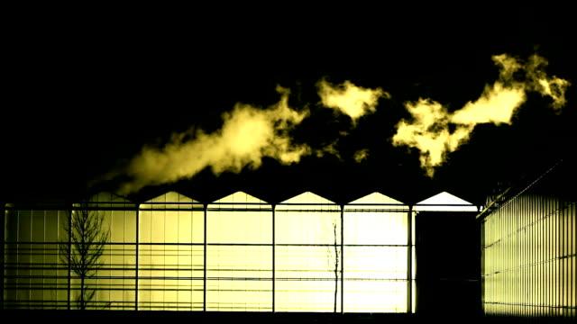 glasshouse video
