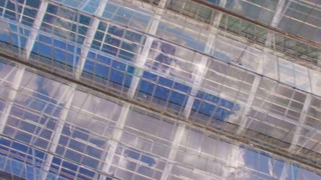 vídeos de stock e filmes b-roll de glasshouses for flowers, vegetables and marijuana growing. modern agriculture from above. camera flight over garden. - estufa estrutura feita pelo homem