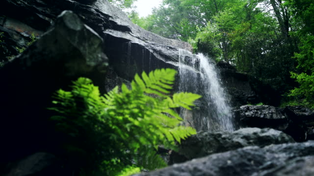 glen onoko falls in the lehighton state park, near by jim thorpe. pennsylvania, usa. - горы поконо стоковые видео и кадры b-roll