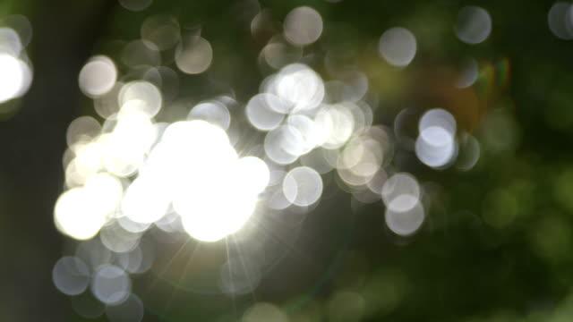 Glimmering Lights video