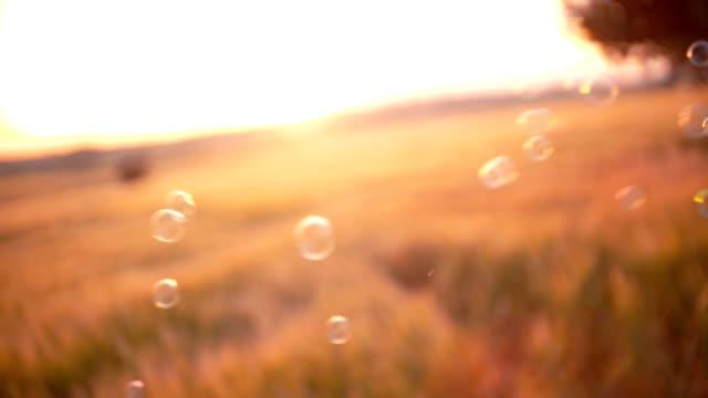 Glistening bubbles blown in the wind in a field video