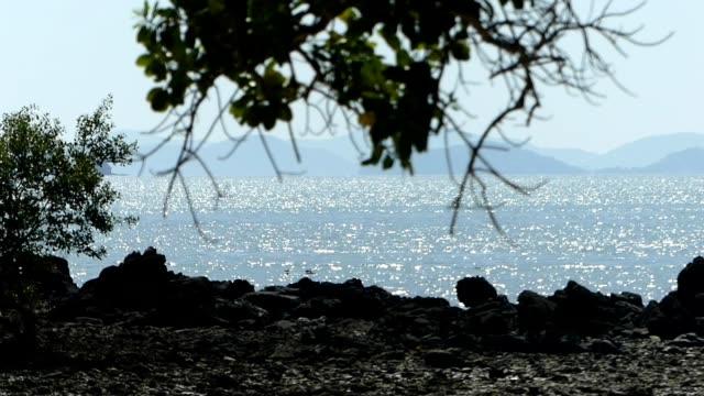 Glittering sea seen from rocky beach.
