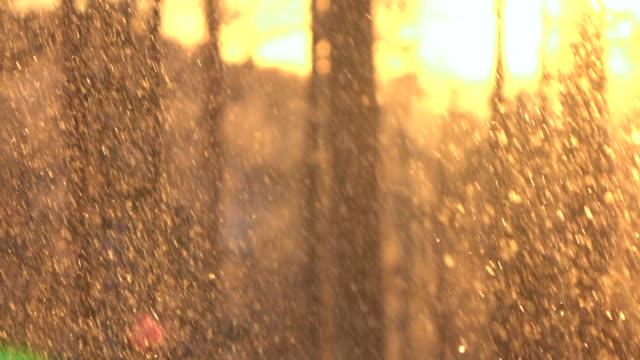 zeitlupe: glitzernde schneeflocken fallen auf bergwald am goldenen sonnenuntergang - schneeflocke sonnenaufgang stock-videos und b-roll-filmmaterial