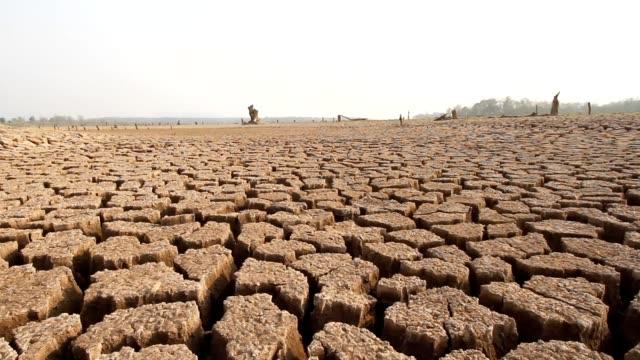 Global warming impact video