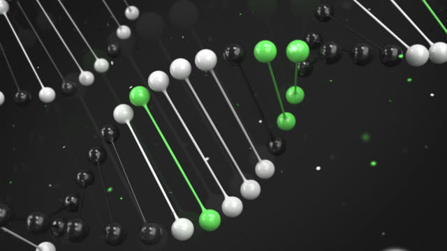 Gloss model of black, white and green DNA strand on black background video