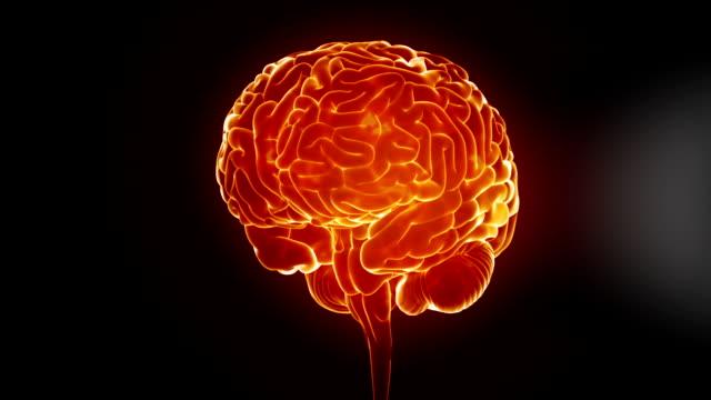 Glowing brain video