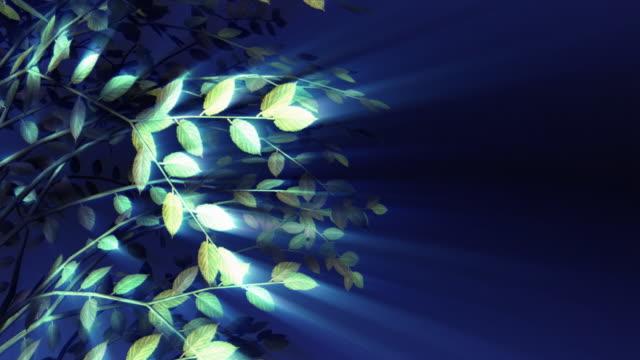 Glowing Shadow Tree Loop 004 video