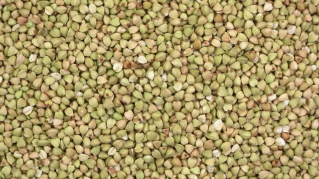granos de trigo libre de gluten - vídeo