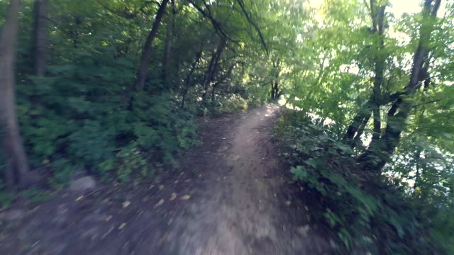 POV of go fast on a forest path in a summer sunny day POV, first person perspective view of man who go ride fast on a forest path in a summer sunny day. Mountain bike riding in green woods first occurrence stock videos & royalty-free footage