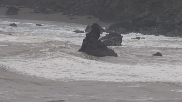 ヤギの石のビーチはヤギ岩ポイントとロシアの川の間に位置します。 - 水鳥点の映像素材/bロール