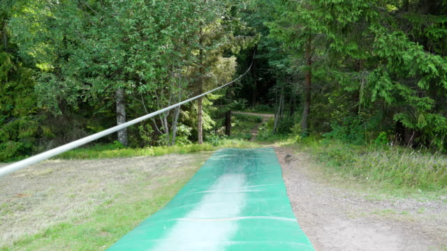 going inside the forest trees in the adventure park - orticoltura video stock e b–roll