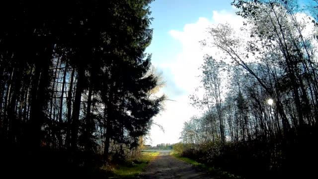 gå igenom motorväg rakvere i estland - fur bildbanksvideor och videomaterial från bakom kulisserna
