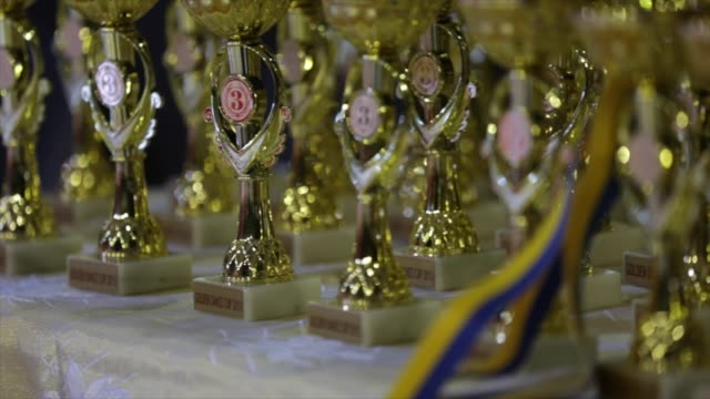 gold and silver medals of the final game of the ukrainian rugby cup. bouquet from sports medals, rugby champion cup - badge video stock e b–roll