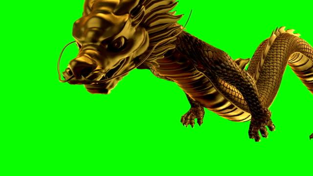 gold dragon fliegen links und rechts grün bildschirm - drache stock-videos und b-roll-filmmaterial