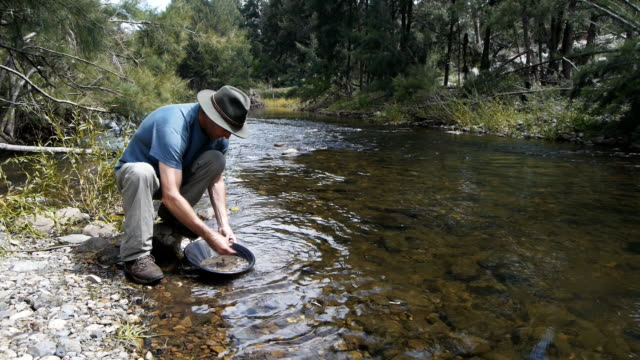 gold prospector - gold waschen stock-videos und b-roll-filmmaterial