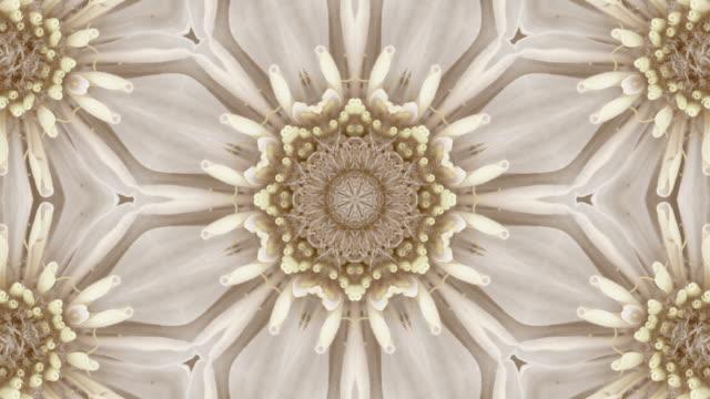 gold textured seamless vintage floral pattern - мандала стоковые видео и кадры b-roll