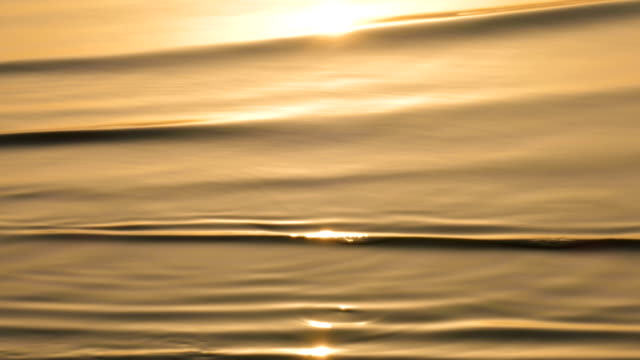 Golden background of rippled water surface Background from golden colored sparkling water surface pond stock videos & royalty-free footage