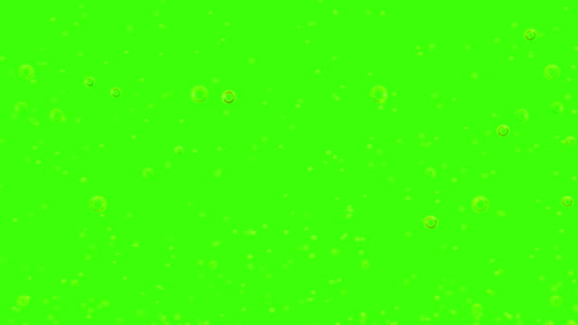 golden bubbles movement inside a glass of champagne on green screen chroma key background, seamless loop, relax and party video