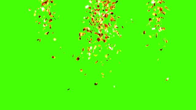 Golden Confetti Rain video