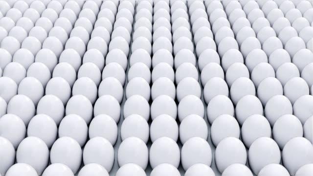 흰색 사이에 황금 달걀 - 반복 스톡 비디오 및 b-롤 화면