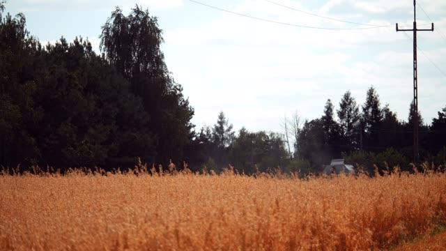 vidéos et rushes de moissonneur de champ d'or - seigle grain
