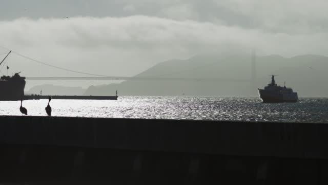 golden gate bridge mist