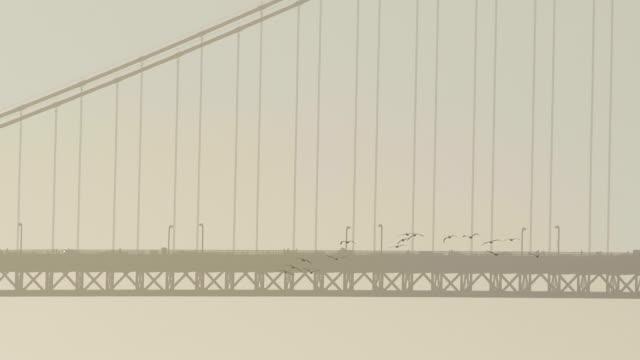 golden gate bridge, san francisco - abstract silhouette art bildbanksvideor och videomaterial från bakom kulisserna