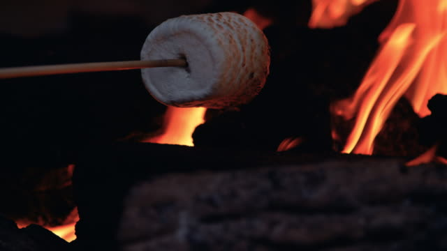Golden Marshmellow Roasting Low in Fire Coals HDR flame pit toasting camping treat on stick marshmallow stock videos & royalty-free footage