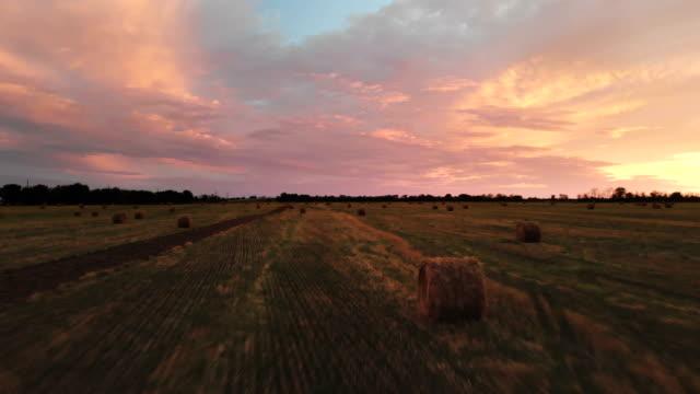 goldener, mehrfarbiger sonnenuntergang über einem bauernhof mit heuballen - schwache beleuchtung stock-videos und b-roll-filmmaterial