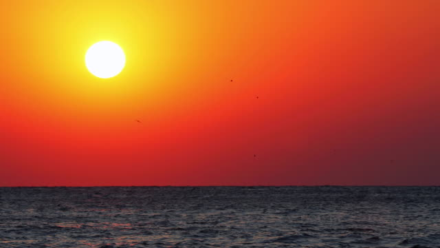 Golden sunrise over the sea waves Golden sunrise over the sea waves water bird stock videos & royalty-free footage