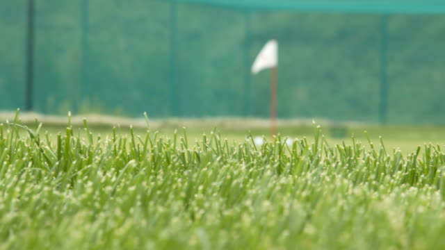 Golf chip and pitch training area video