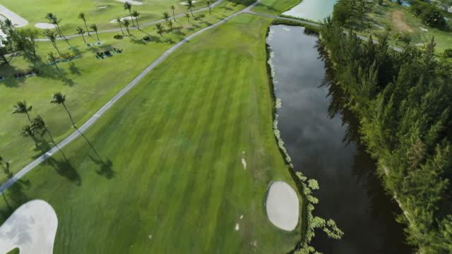 Video aéreo del campo de golf. Cancha de golf de lujo con palmeras de Punta Cana, República Dominicana - vídeo
