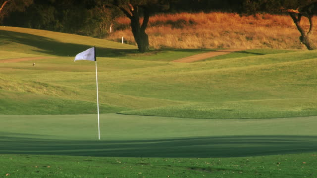 Golf Course Hole, Green & Flag video