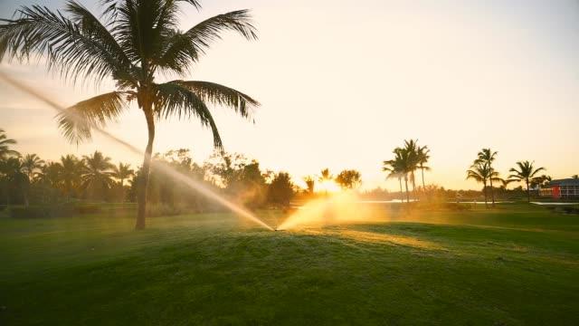 golfplatz sprinkler auf fairway bei goldenem sonnenuntergang - bewässerungsanlage stock-videos und b-roll-filmmaterial
