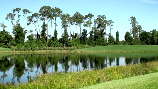 vídeos y material grabado en eventos de stock de campo de golf - charca