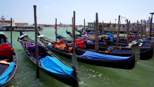 Gondoliers docking their gondola boats, business and profession, Venice, Italy video