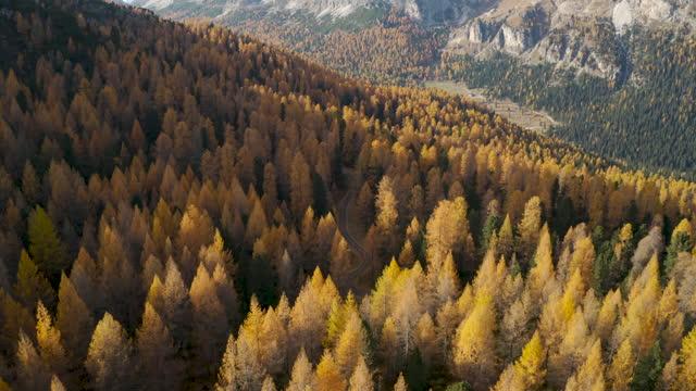 Gorgeous aerial view of Italian Dolomites on autumn video