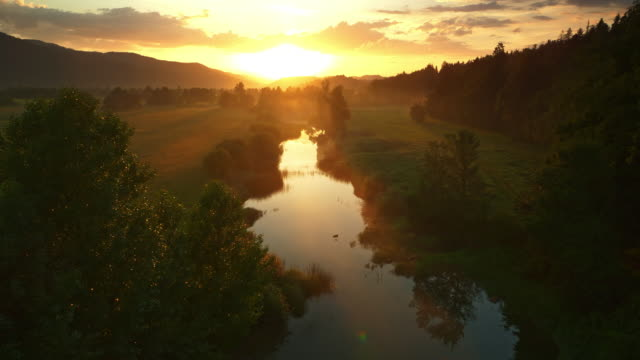 AERIAL Gorgeous golden sunrise over the river Aerial shot of the rising sun painting the calm river in gold as it winds amongst the meadows. Shot in Slovenia. sunrise dawn stock videos & royalty-free footage