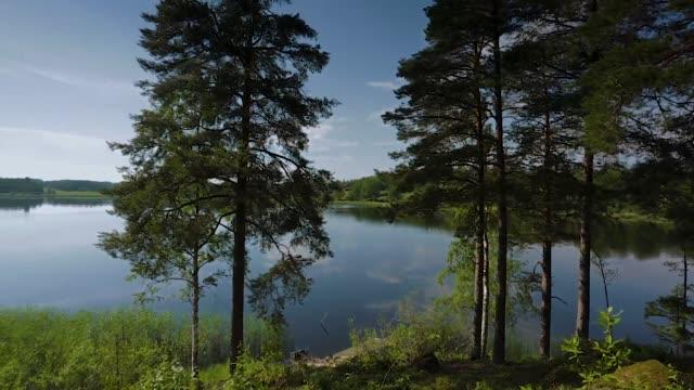 underbar utsikt över vackra himmel reflekterande på en spegel av sjön yta. gröna skogsträd som gränsar till sjön på båda dessa storlekar. underbara natur sommar bakgrunder. sverige. europa. - summer sweden bildbanksvideor och videomaterial från bakom kulisserna