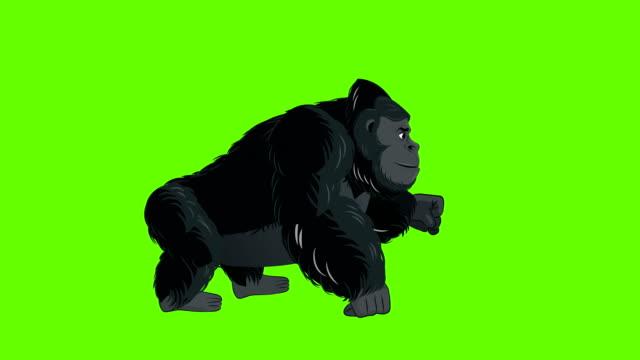 Gorilla Run cycle animation