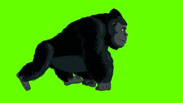 Gorilla Walk cycle animation