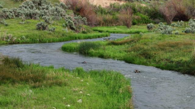 Goshen River in Utah video