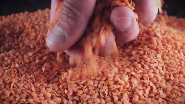 4K Grains Background, Hand Taking Red Lentils video