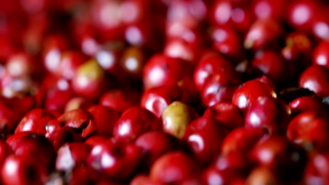 grains of pepper pink pepper colorful in extreme slow-motion fall on a wooden surface and mingle with each other